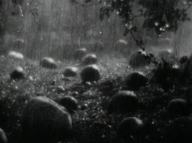La terre, film d'Alexandre Dovjenko et musique de Sphota